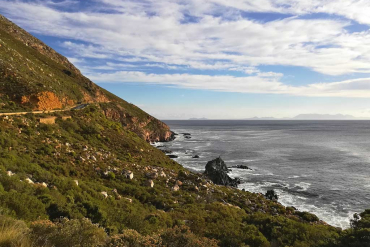 Scenic Coastal Road in the Western Cape