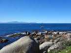 False bay in Western Cape